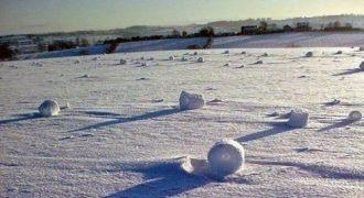 Giant Self Rollin Snowball