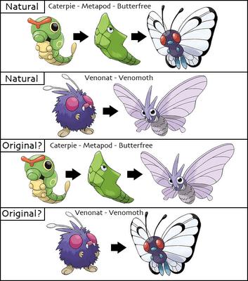 Venonat - Butterfree Pokemon Theory