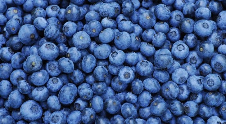Blueberries - peoples favourite blue colored food