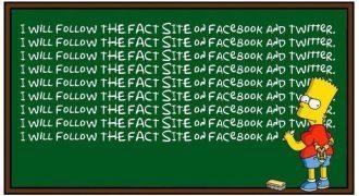 Bart Simpson Facts