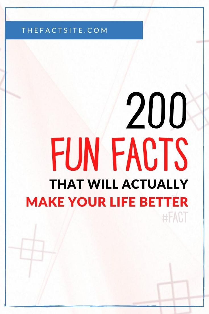 200 Fun Facts That'll Actually Make Your Life Better