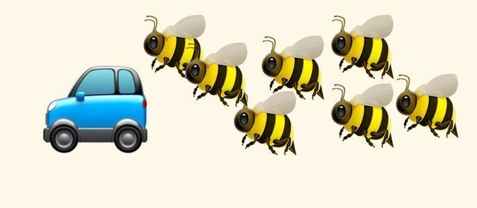 A swarm of 20,000 bees followed a car for two days because their queen was stuck inside.