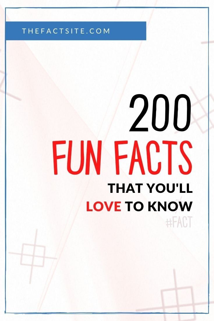 200 Fun Facts That You'll Love To Know