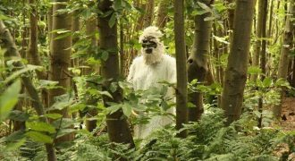 Facts About the Yeti