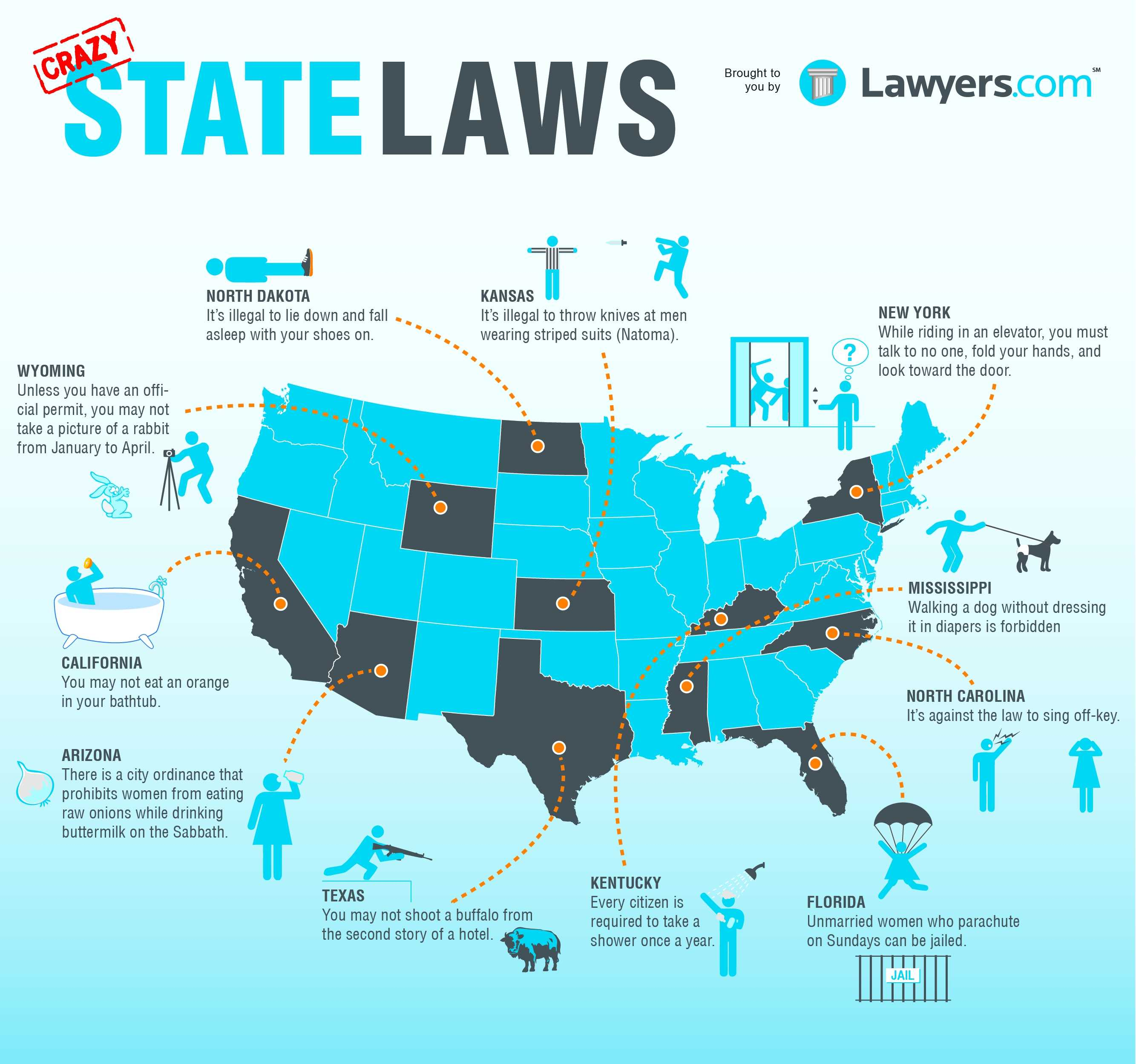 Eleven Crazy State Laws   InfoGraphic   The Fact Site