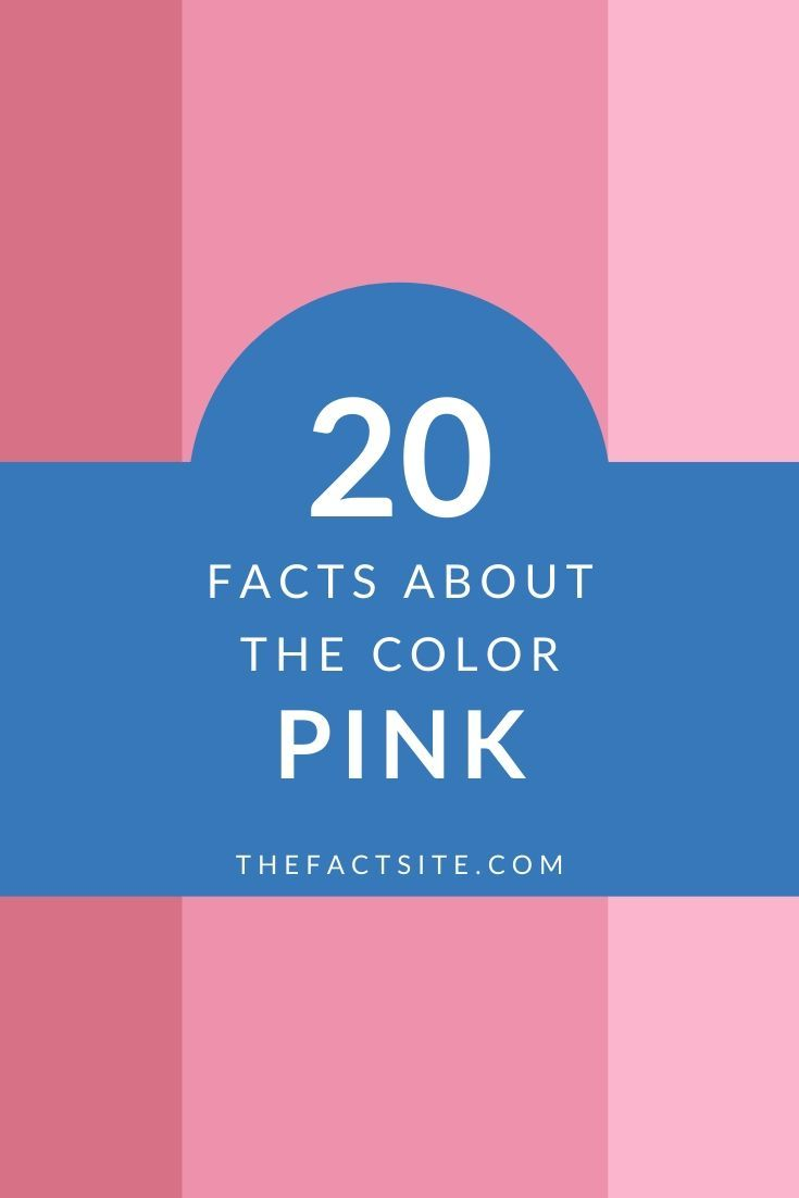 20 Facts About the Color Pink