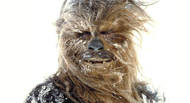 20 facts about chewbacca the fact site