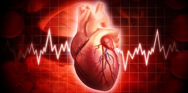 Human Heart Facts