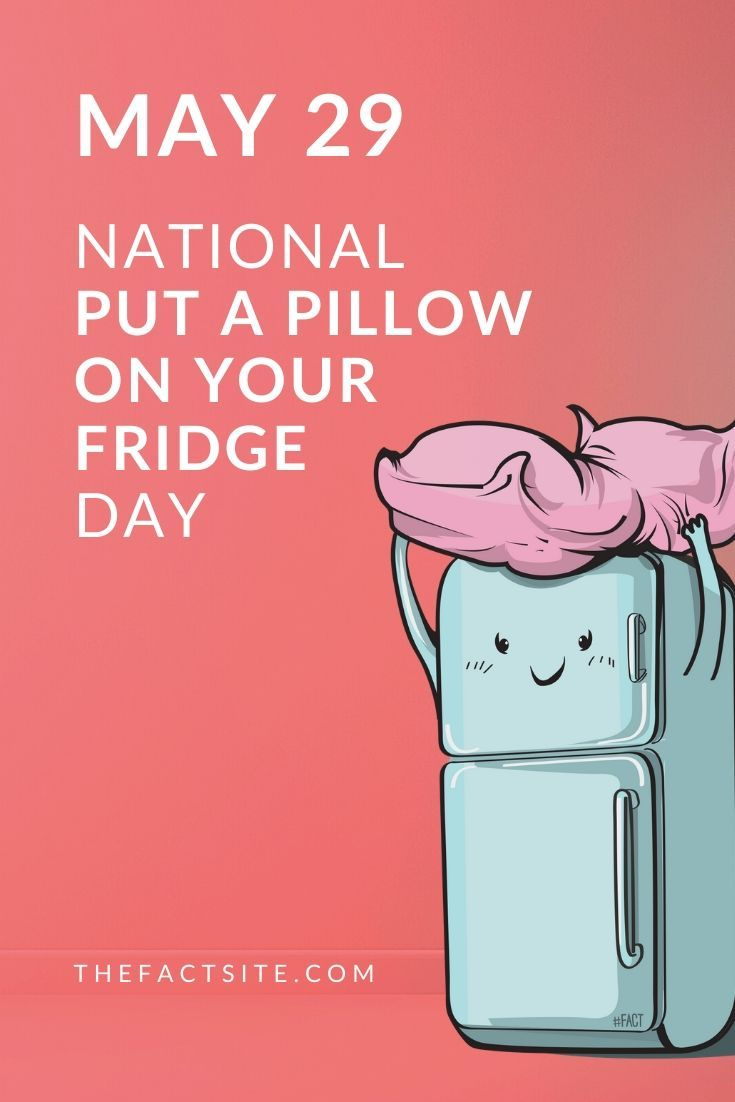 Put A Pillow On Your Fridge Day | May 29