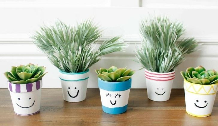 Houseplants in pots with smiling faces on them