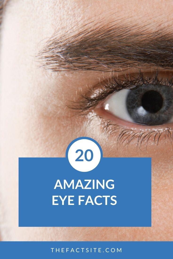 20 Amazing Eye Facts