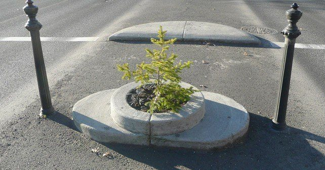 Mills End Park - Smallest Park In the World