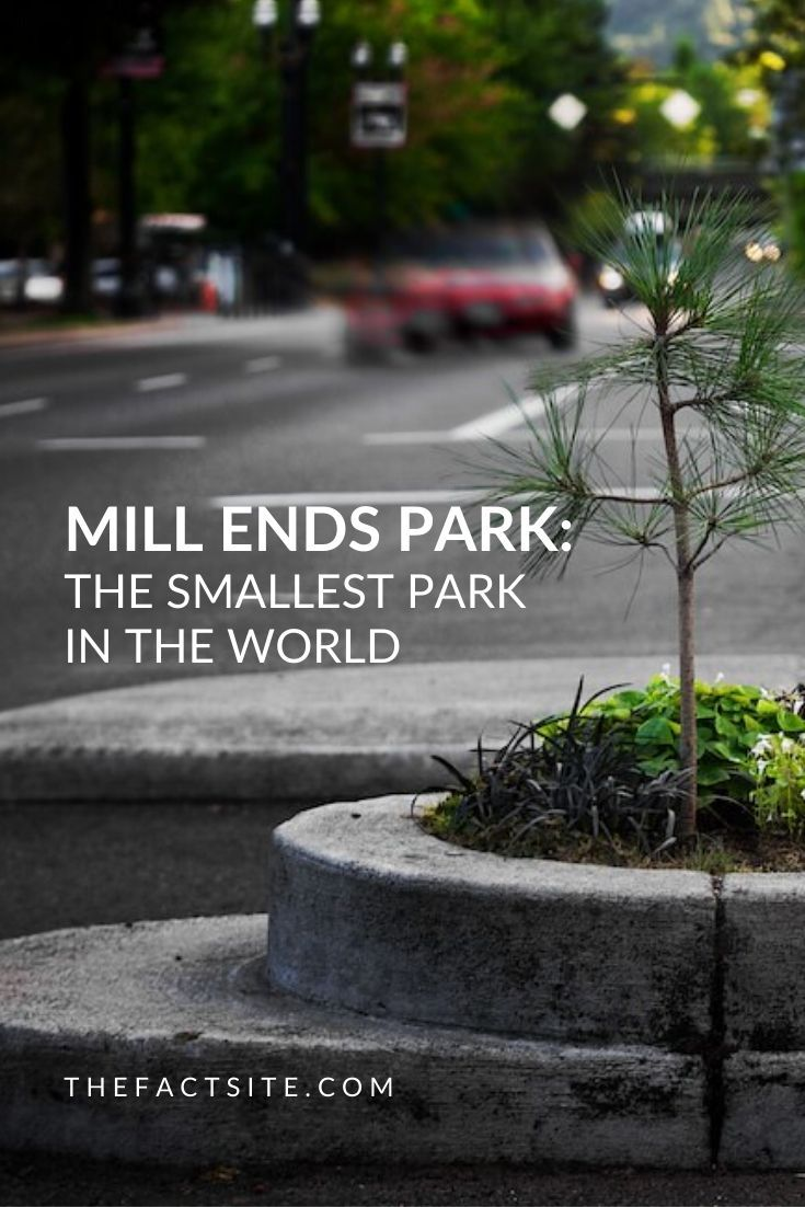 Mill Ends Park | The Smallest Park in the World