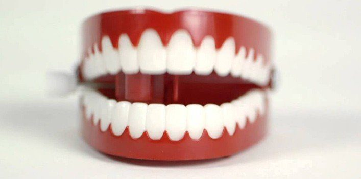 crazy teeth facts