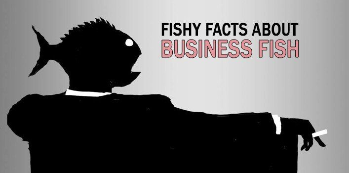 Fishy Facts About Business Fish