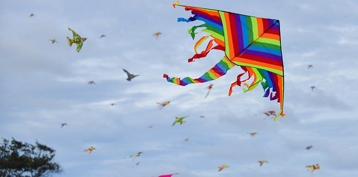 8th February - Kite Flying Day.