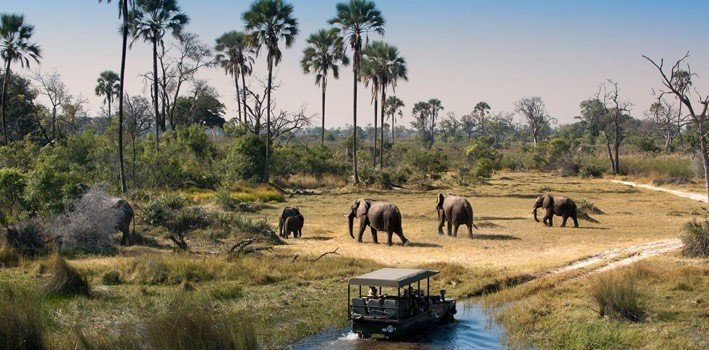 Botswana - Africa - Top Travel Destinations