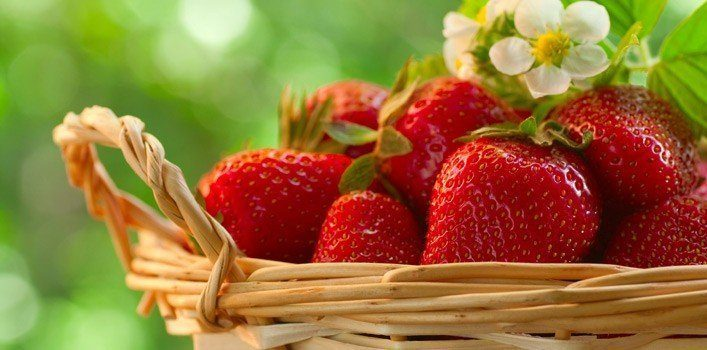 Seven Strawberry Facts