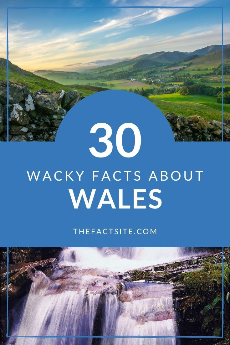 30 Wacky Facts About Wales