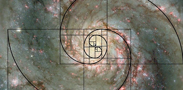 23rd November - Fibonacci Day.