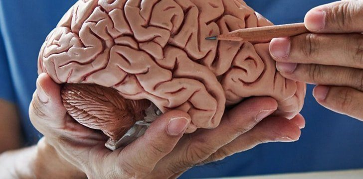 13th October – Train Your Brain Day.
