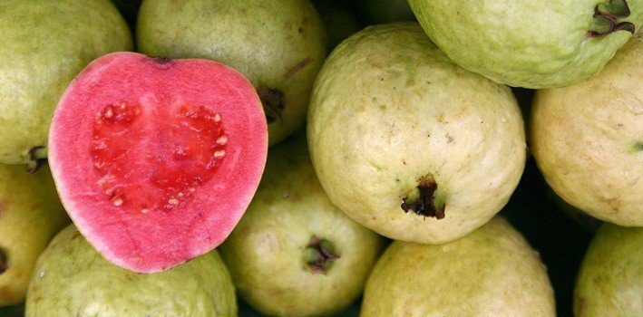 15 Fruity Facts About Guavas | The Fact Site