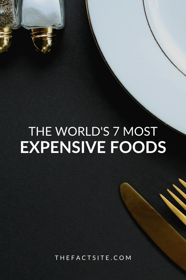 The World's 7 Most Expensive Foods