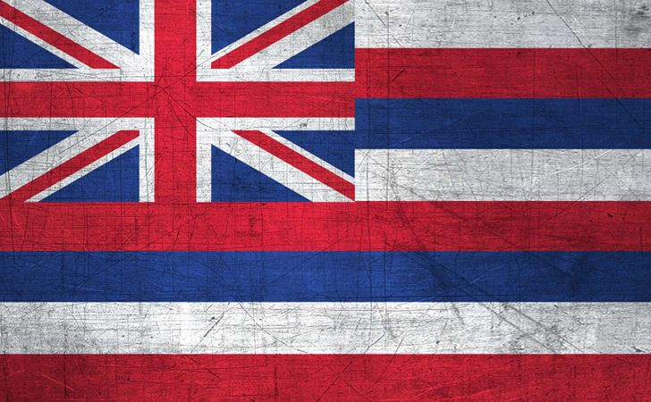 The Hawaiian flag purposefully looks like a combination of the British and American flags.
