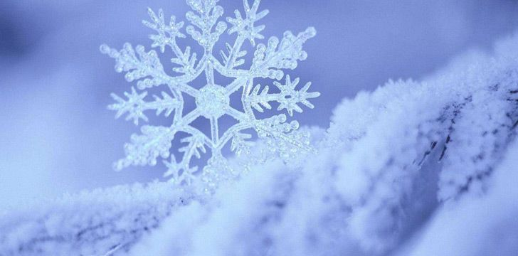 The world's largest singular snowflake was 15 inches wide.