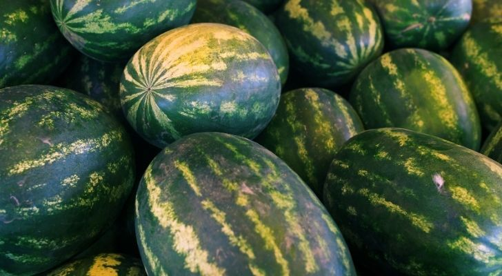 Lots of big yummy watermelons
