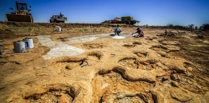 Massive dinosaur footprints in the soil