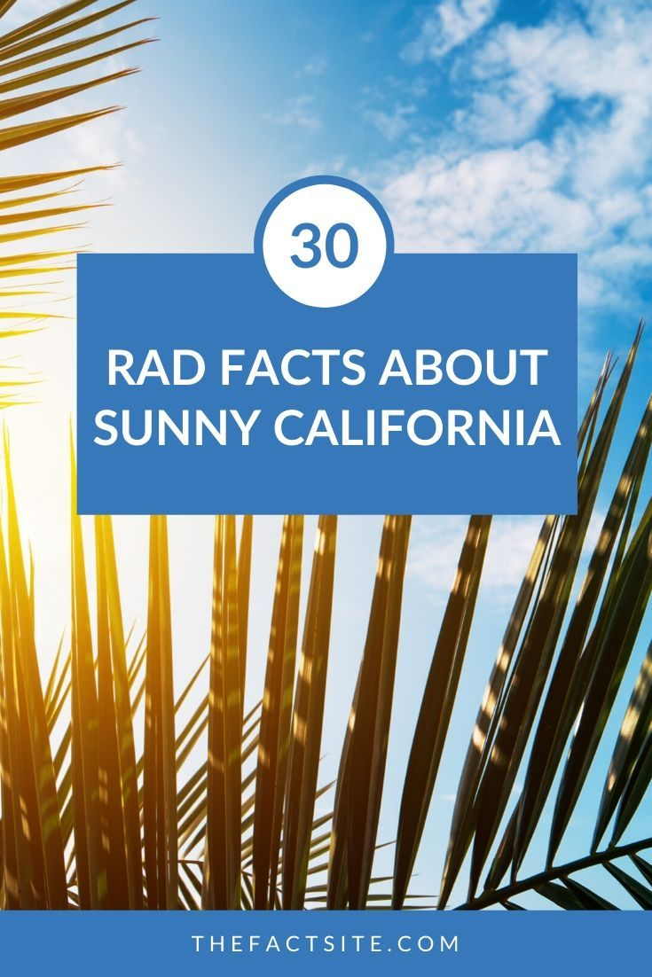 30 Rad Facts About Sunny California