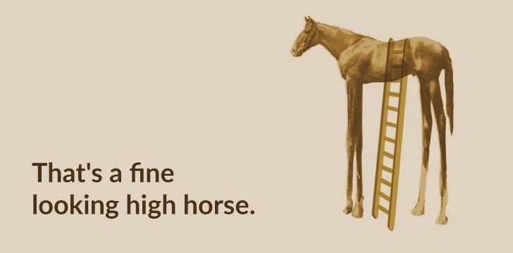 That's a fine looking high horse