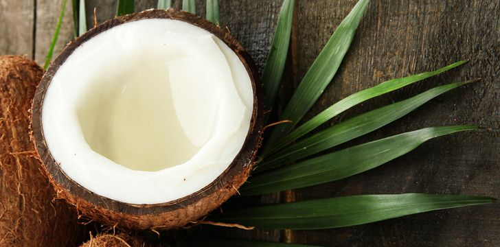 24 Facts About Coconuts