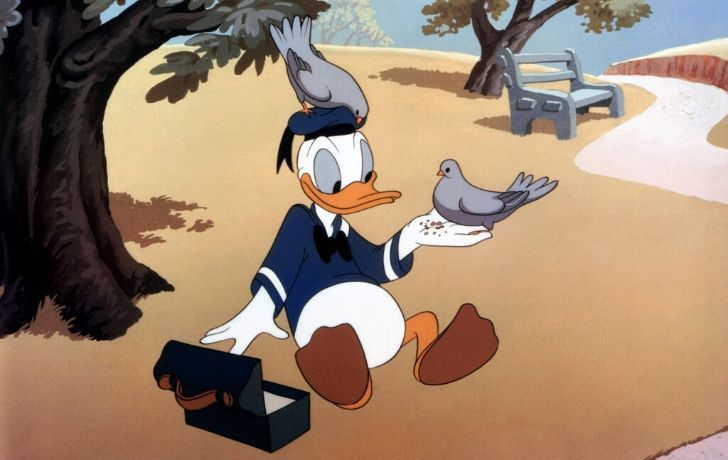 Donald Duck sitting on a beach in his sailor's outfit.