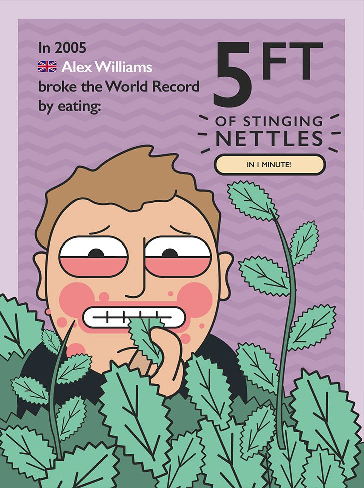 World record for eating the most stinging nettles
