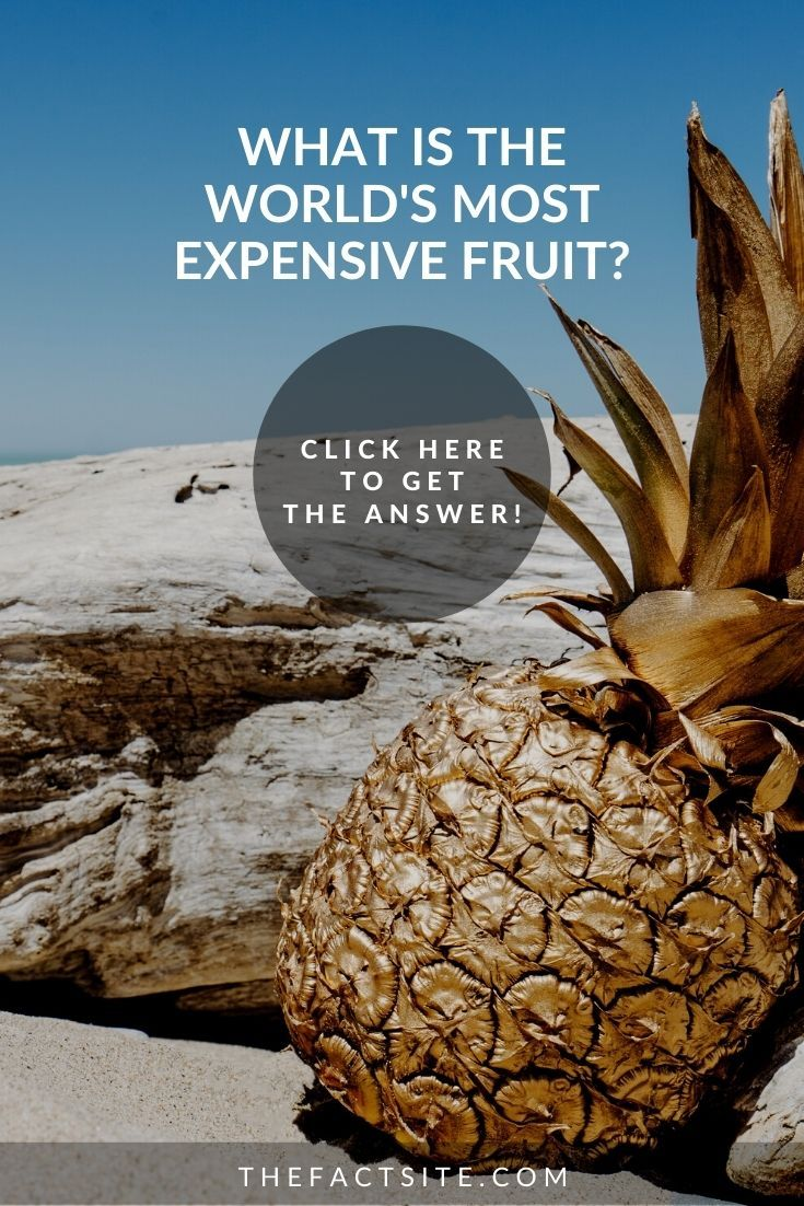 What Is The World's Most Expensive Fruit?