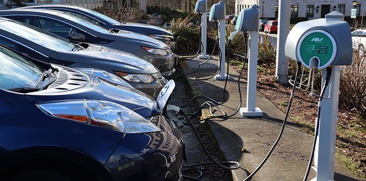 Car emissions down, beef emissions up