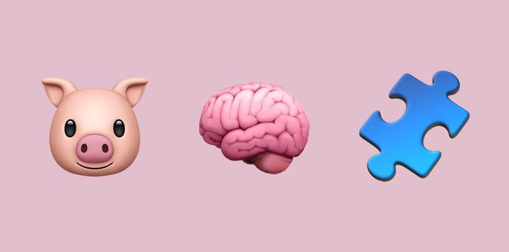 Pigs are very smart animals.