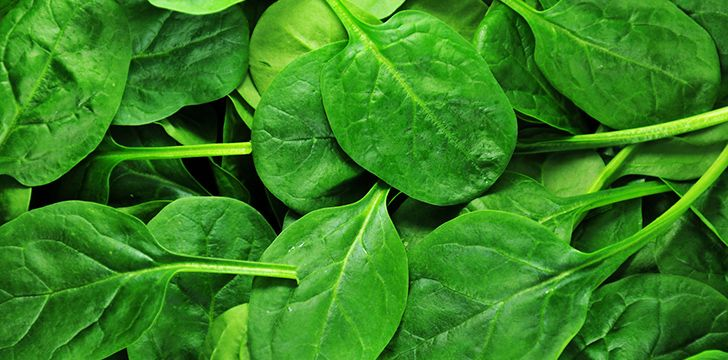 Surprising Spinach Facts