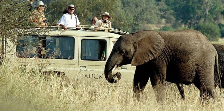 Kenya is the best place in the world for a Safari.