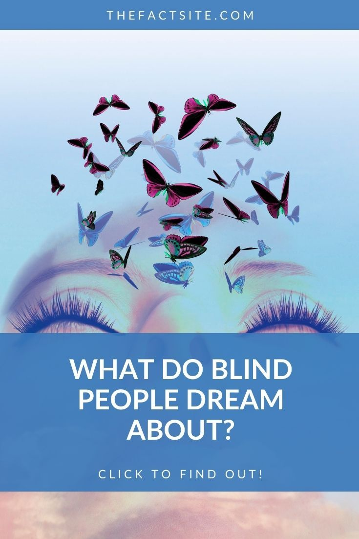What Do Blind People Dream About?