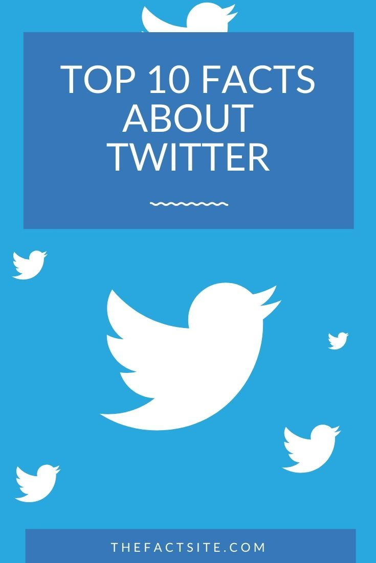 Top 10 Facts About Twitter