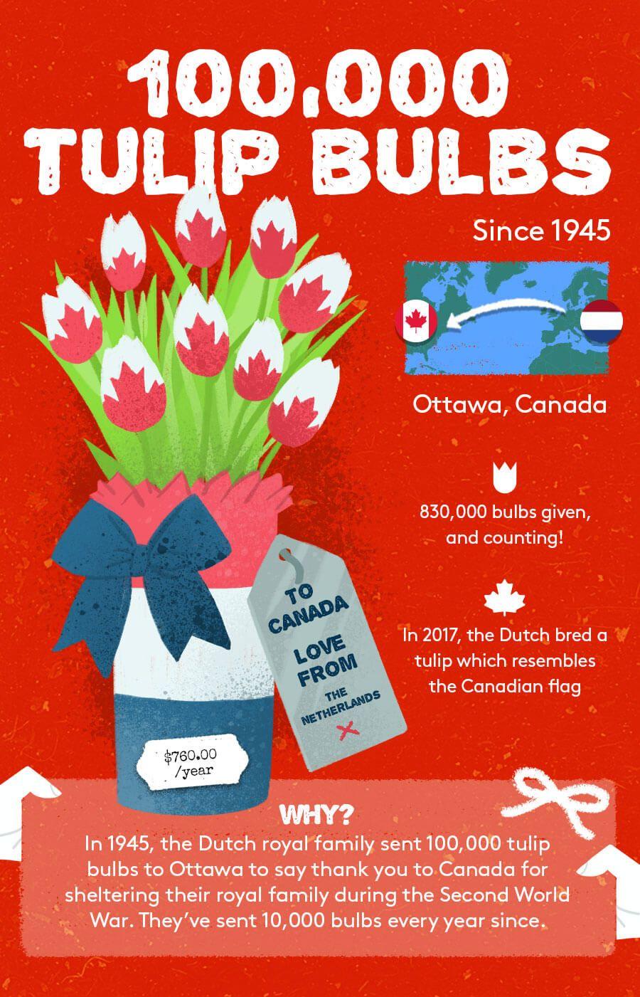 Tulip Bulb Gift Exchange