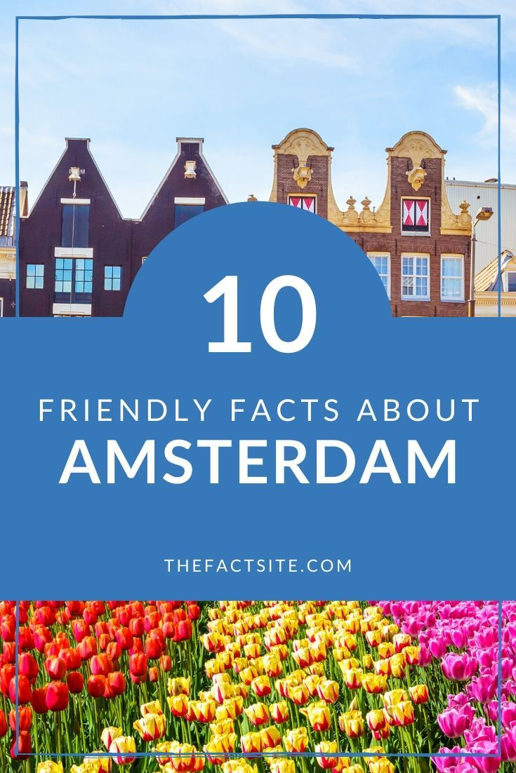 10 Friendly Facts About Amsterdam