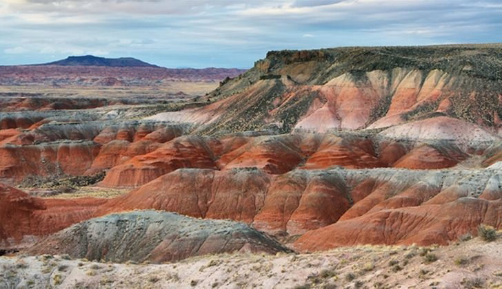 The Petrified Forest is just one of the many alternatives to the Grand Canyon in Arizona