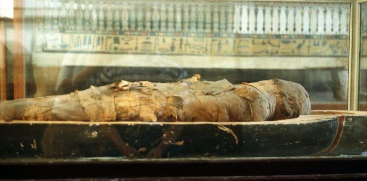 Ancient Egyptian mummy.