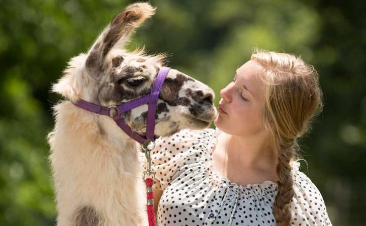 Llama being friendly with a young woman.