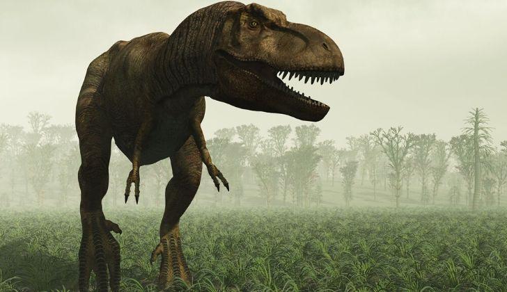 T-Rex standing proud.