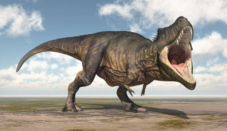 Roaring T-Rex.